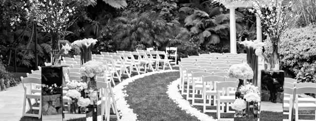 Party Rentals Los Feliz Chairs